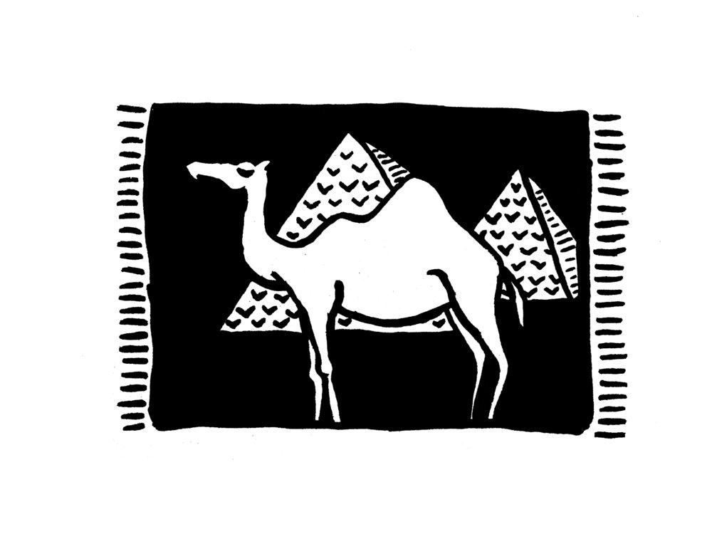 11.03.16_camel.jpg