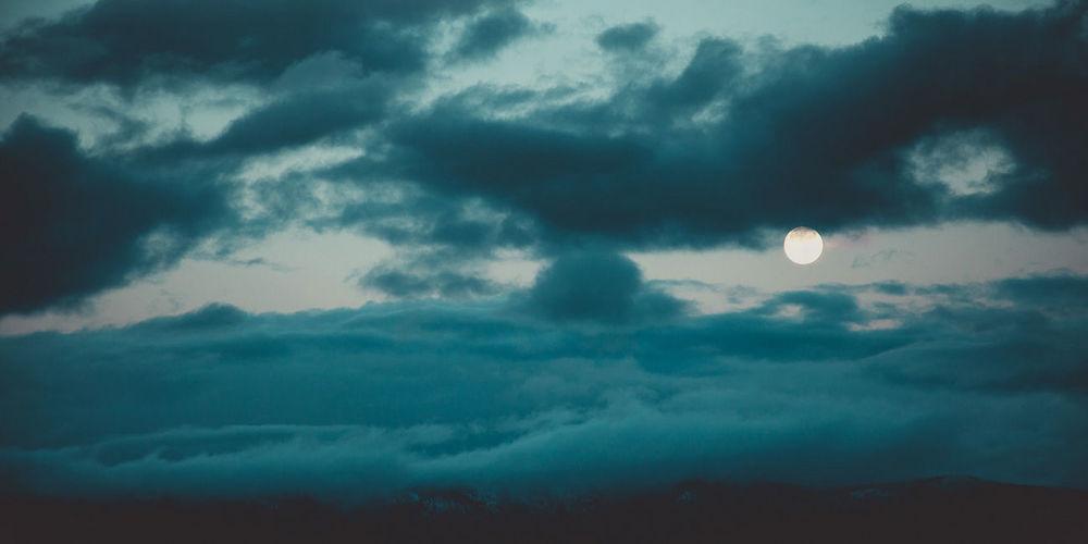 bluemoon-2x4-240dpi.jpg