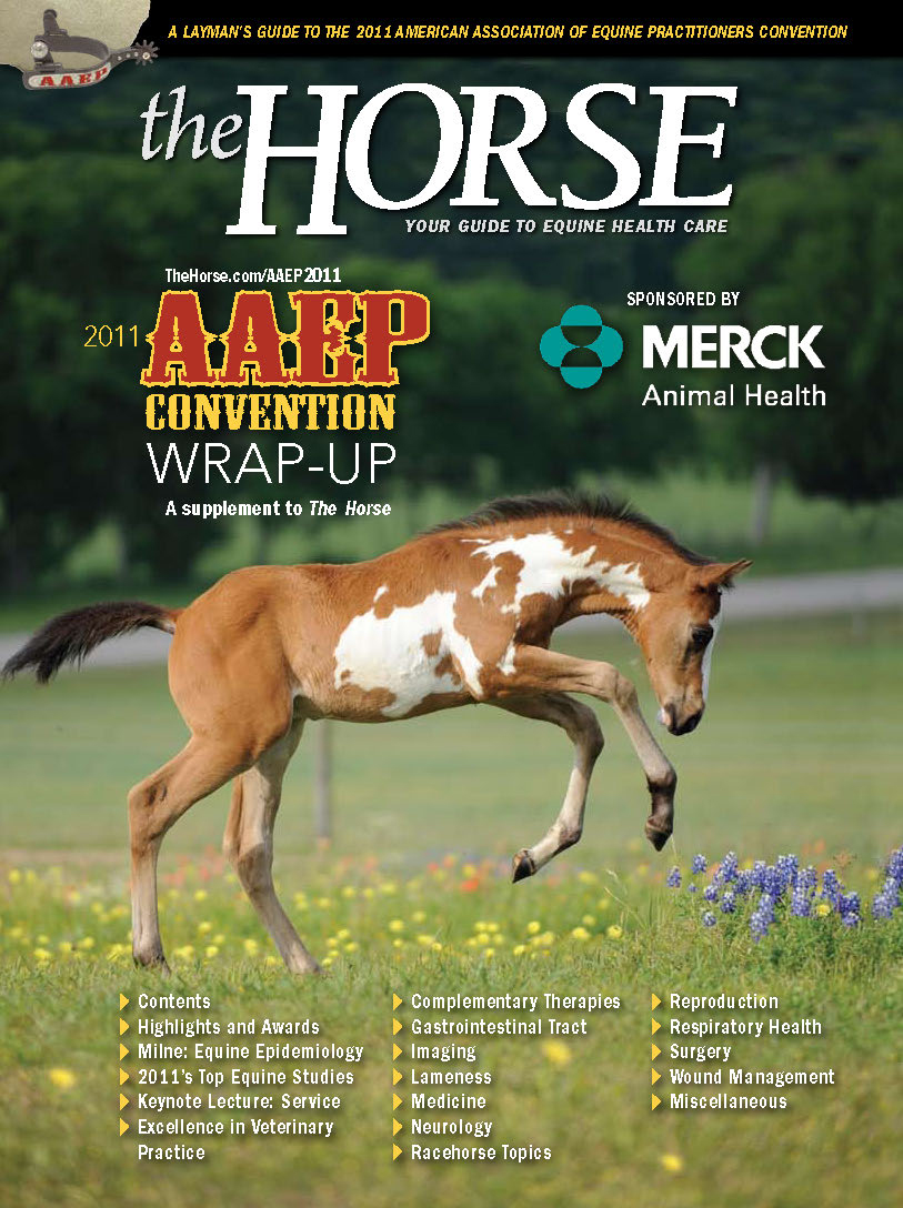 AAEP_WrapUpCover_1_2011 copy.jpg