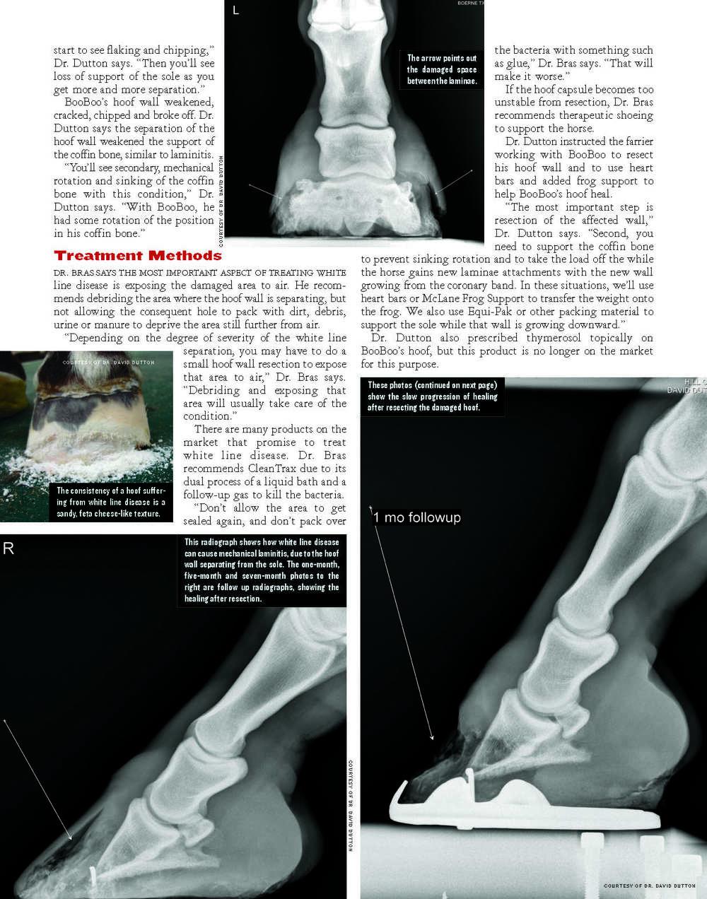 White Line Disease_Page_3.jpg
