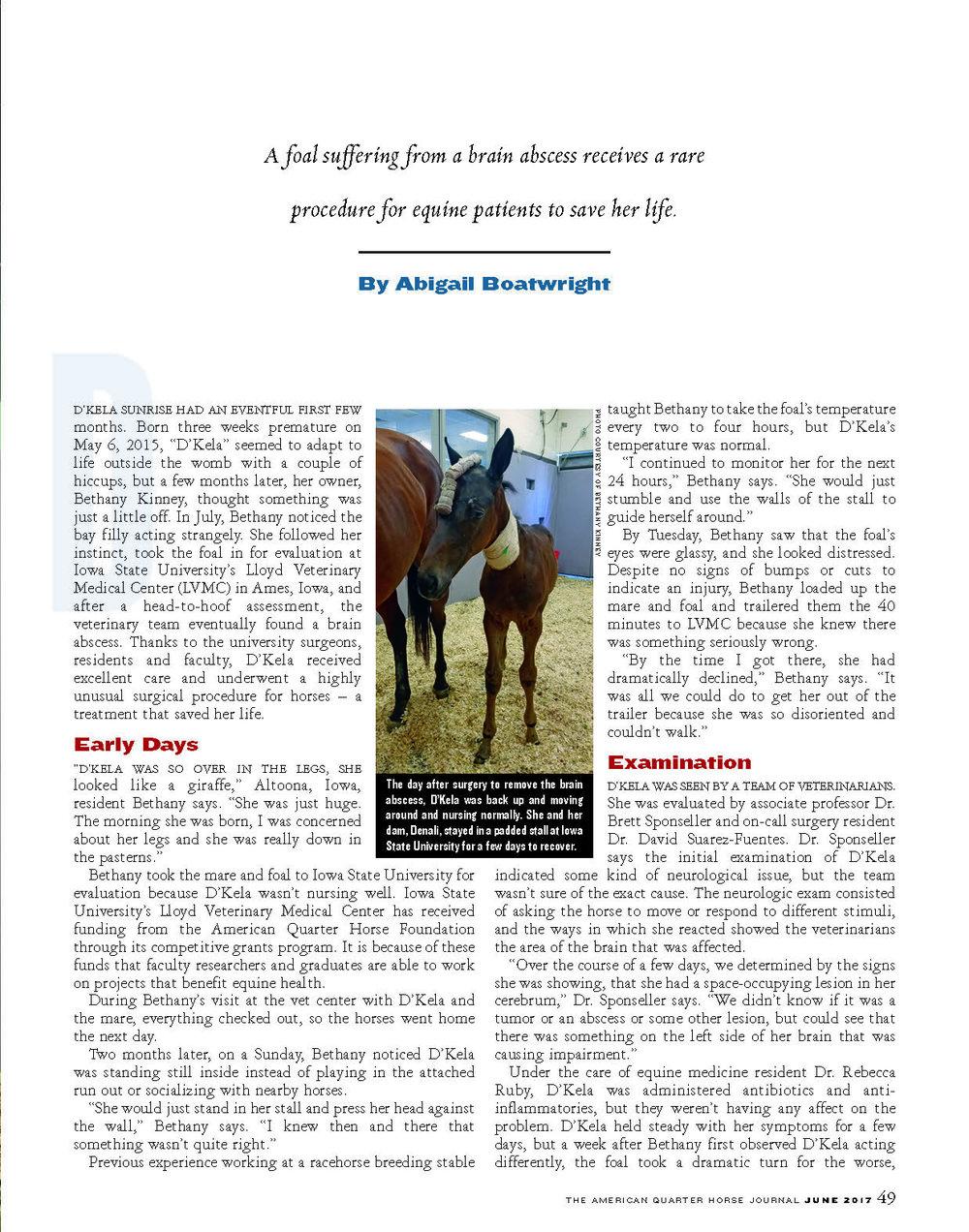 G18 Equine ER_Page_2.jpg