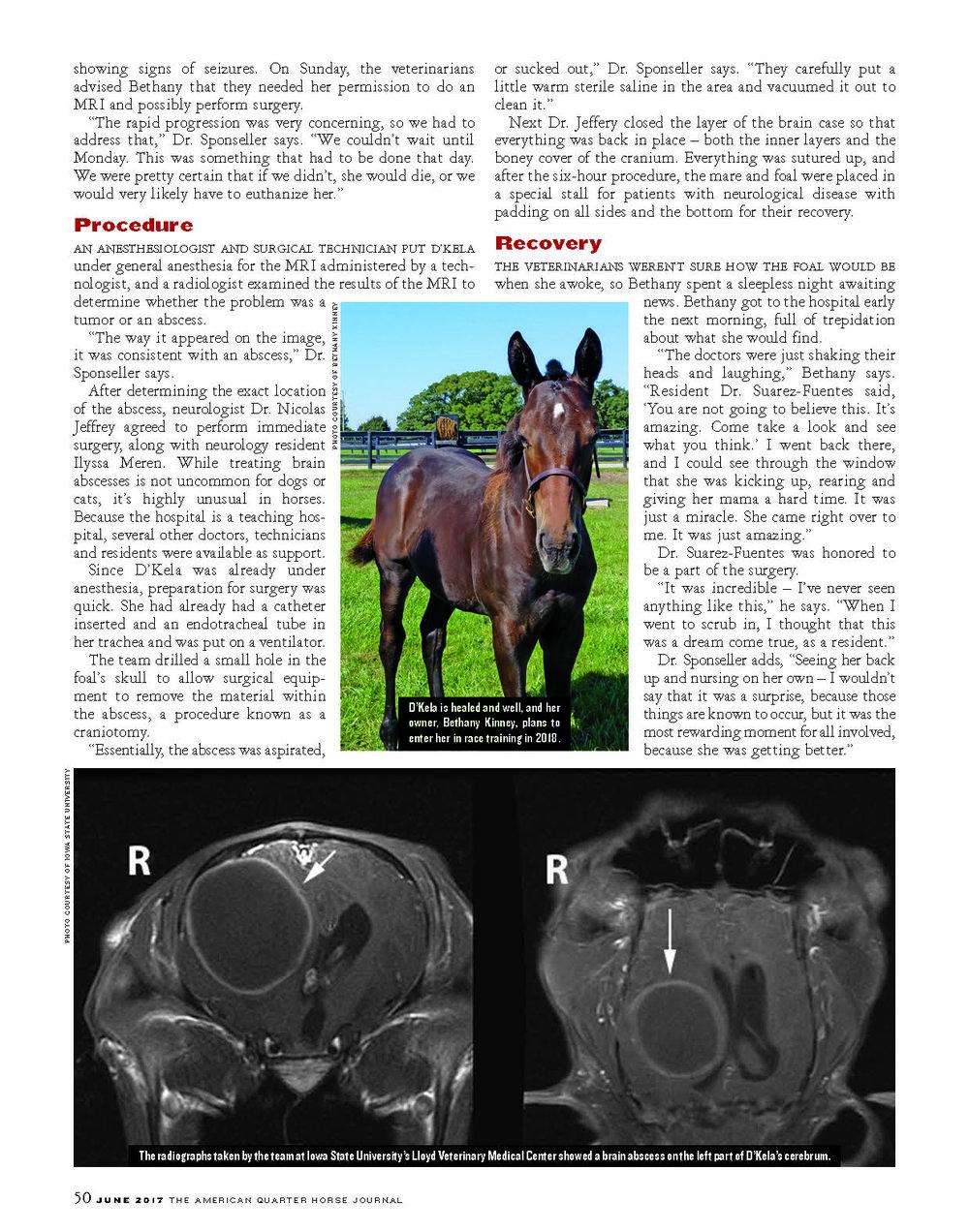 G18 Equine ER_Page_3.jpg