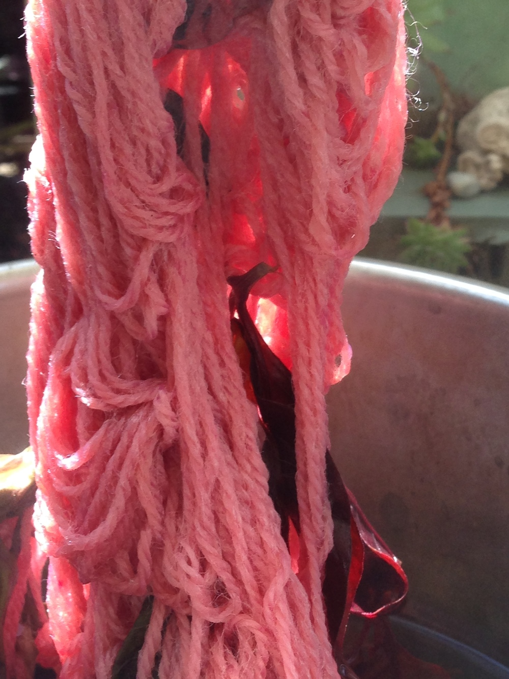 Promising start to boiling... the colour changed considerably the longer it boiled.