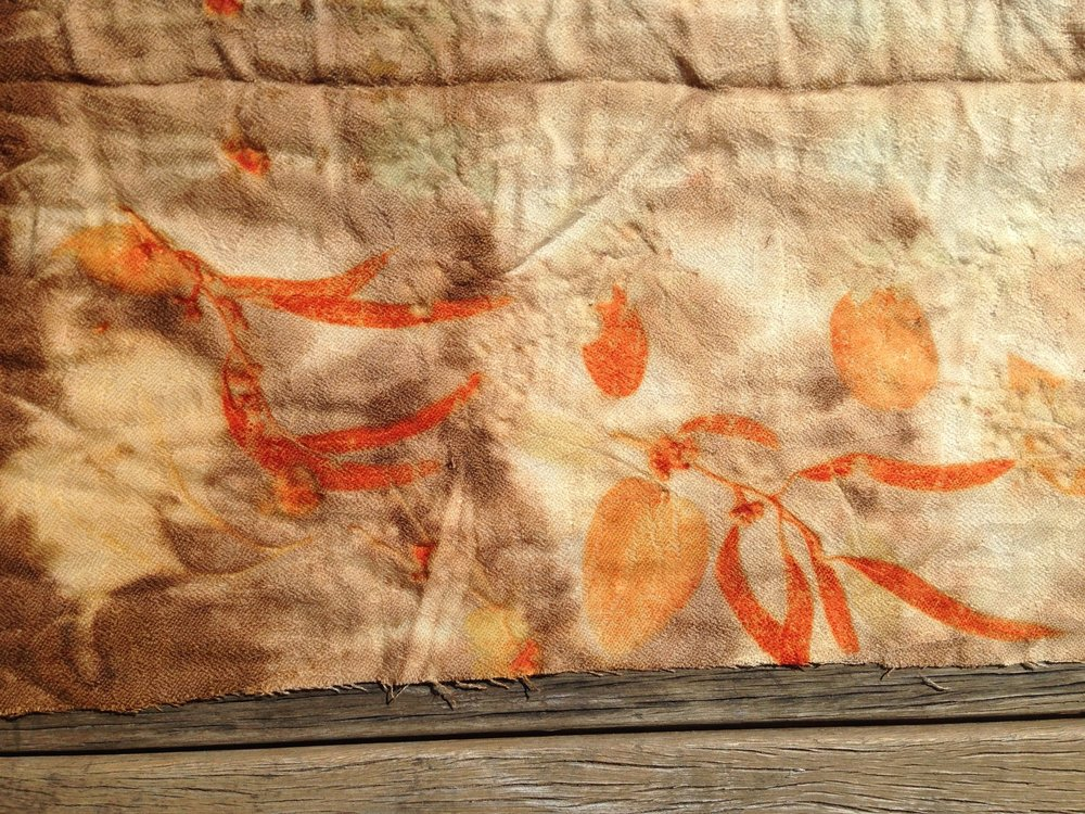 Eucalyptus prints