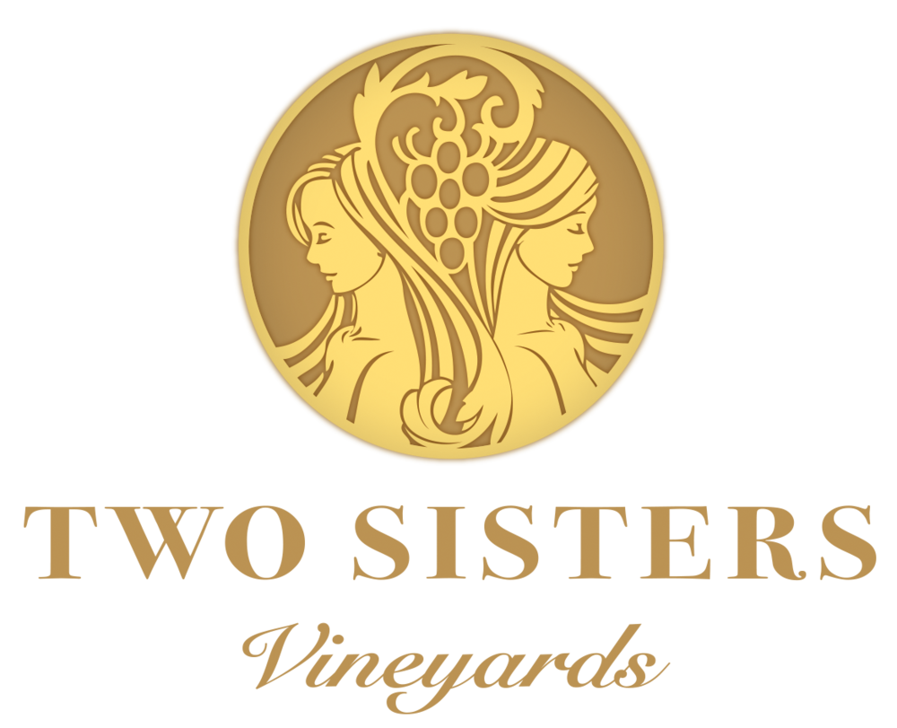Two Sisters TSV_MASTER PRINT LOGO WORDS 2.png