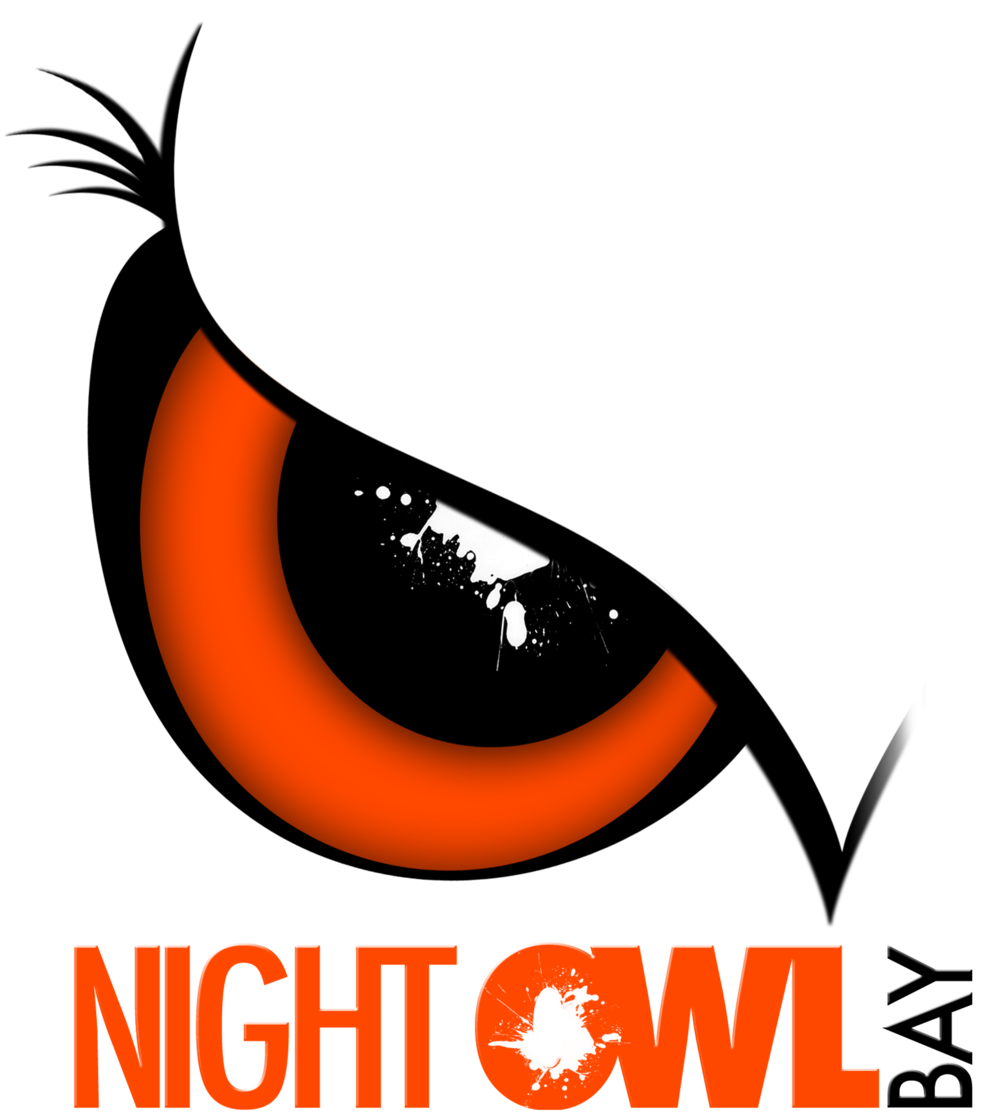 NightOwlLogo4.png