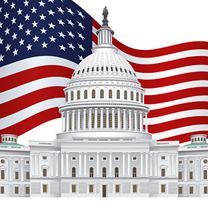 Capitol Flag 300x300.jpg