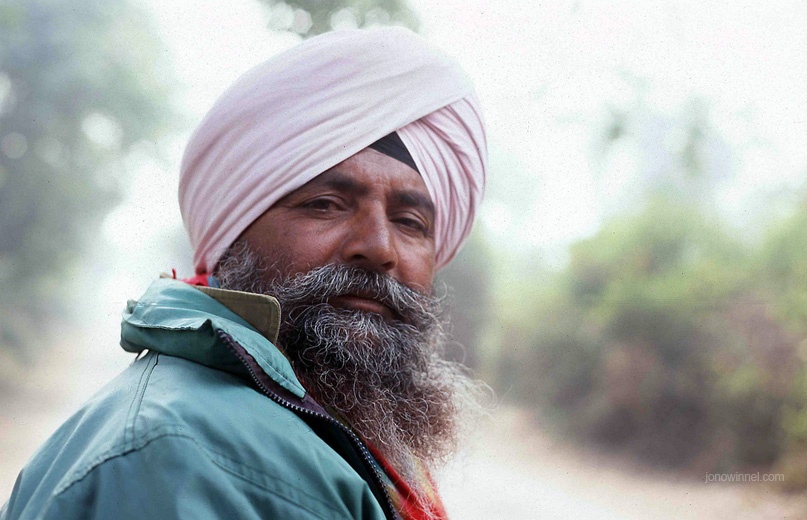 punjab man portrait beard indian