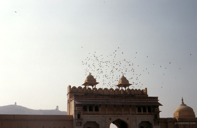 old ancient fort temple flock birds india