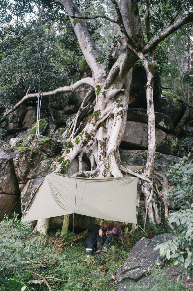Man sheltering under tarp in rain under old tree