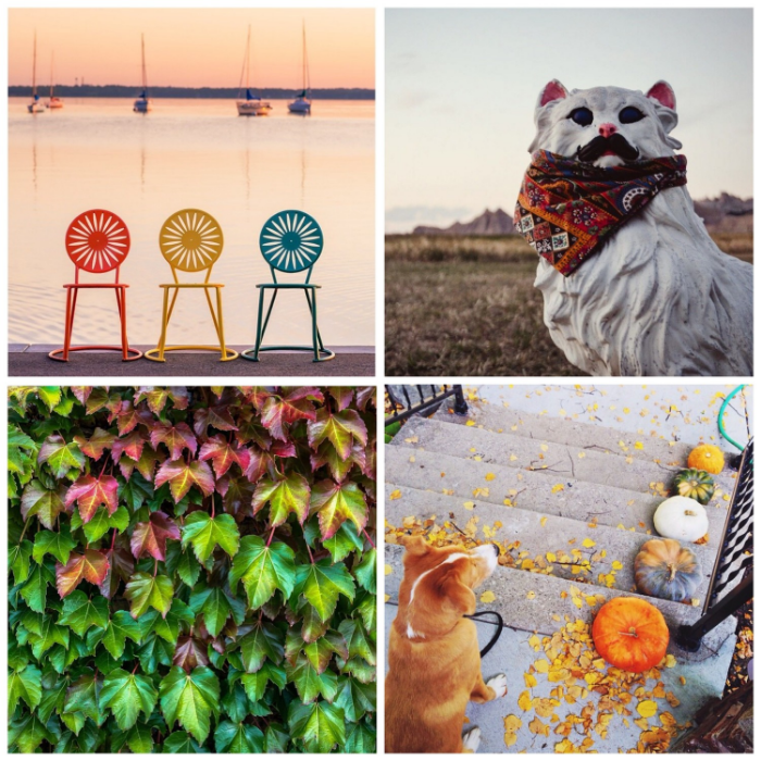 This week's Instacrushes! Clockwise from top left: @ryanmense, @alexatherese, @inspiredtoshare, @beccasabot
