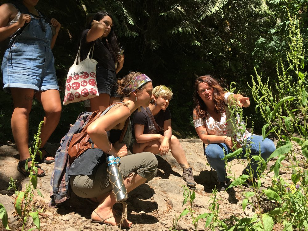 2018 interns on a plant hike with Nicole Telkes discussing Bioregional Herbalism