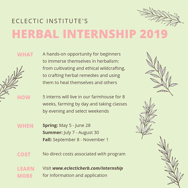 Our Budding Herbalist Internship Program is a unique opportunity to immerse yourself in the world of herbalism. For 8 weeks, interns live in our farmhouse, working on our organic herb farm by day and taking classes on a wide range of herbal topics in the evenings and weekends. We have a team of excellent teachers from diverse backgrounds who, together, provide a strong foundation to the beginning herbalist. 🌱 Best of all, there are no costs associated with this program! All you need is time, energy, a willingness to get dirty, and a thirst for knowledge. 📚 Our application deadline for Spring is just around the corner - February 17! Please share this with folks you think would make a good fit! More information can be found at: www.eclecticherb.com/internship