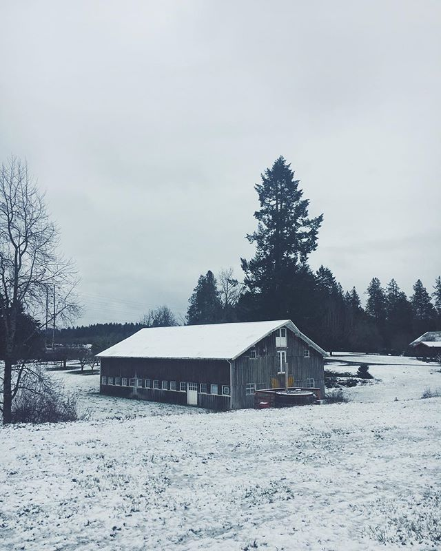 :: continues to wait patiently for spring :: ❄️ ❄️ #neverendingwinter #stillwinter #herbfarm #oregonfarm #sandyoregon