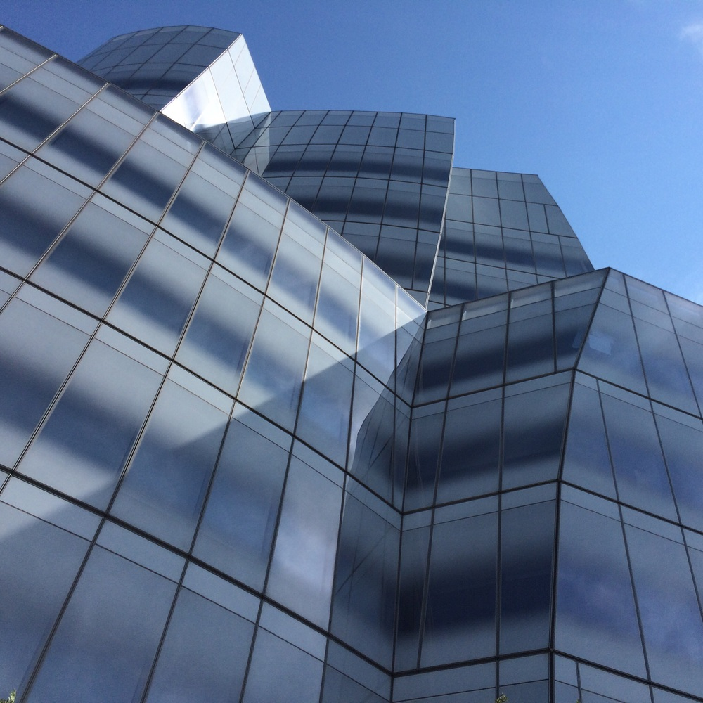 Architect Frank Gehry