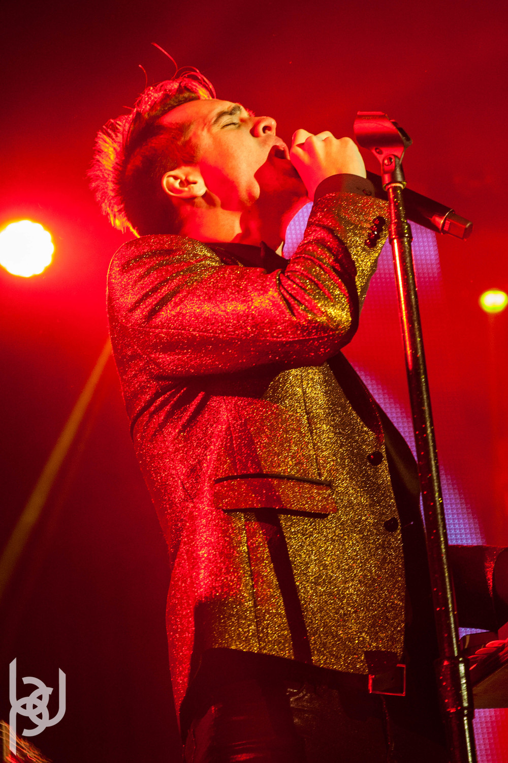 Panic! at the Disco, the Colourist & X Ambassadors at Skyway Theatre 012114 BDP-31.jpg