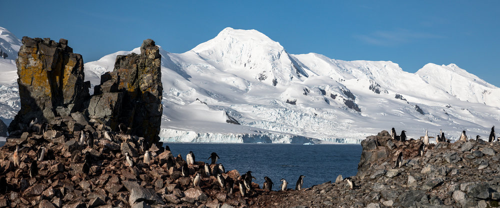 Half Moon Island, Anarctica-Brian Doyle Photo (9).jpg