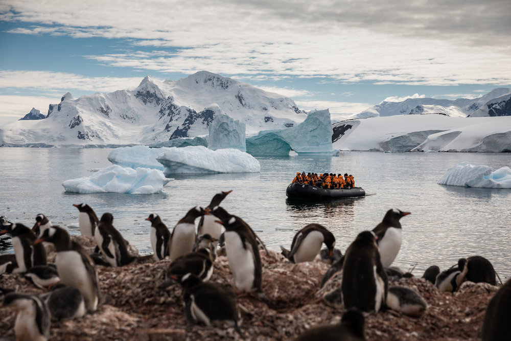 Waterboat Point, Antarctica-Brian Doyle Photo (2).jpg