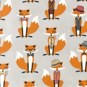 Foxes in Grey
