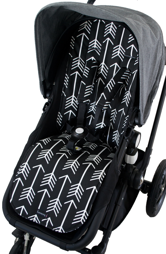 Arrows-Black-Cameleon.jpg