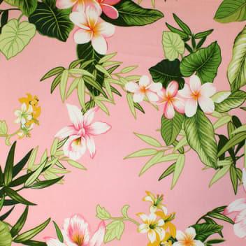 Tropics in Pink