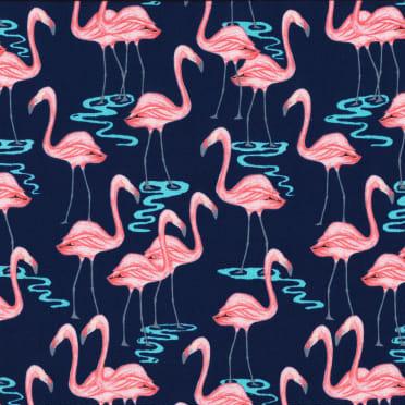 Flamingo Bay in Navy