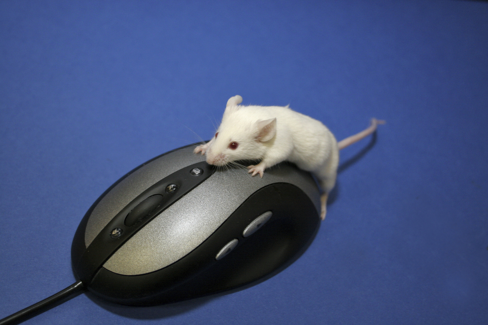 Lab Mouse Security: A Better Mouse!