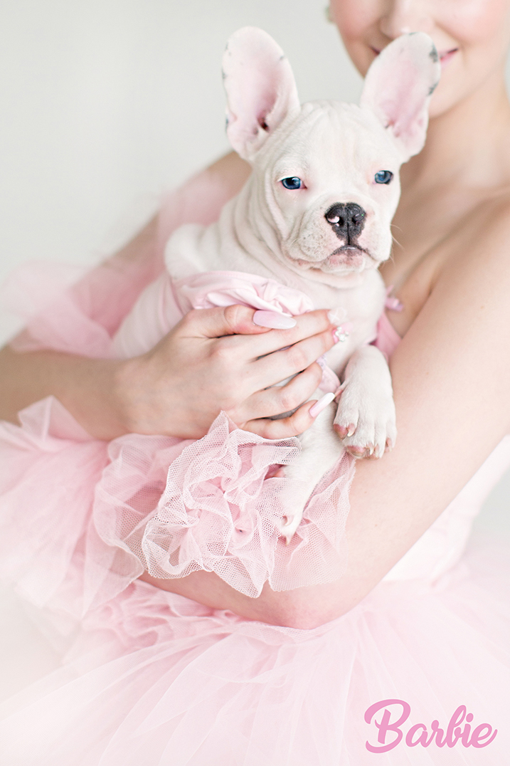 BallerinaBarbie15.jpg