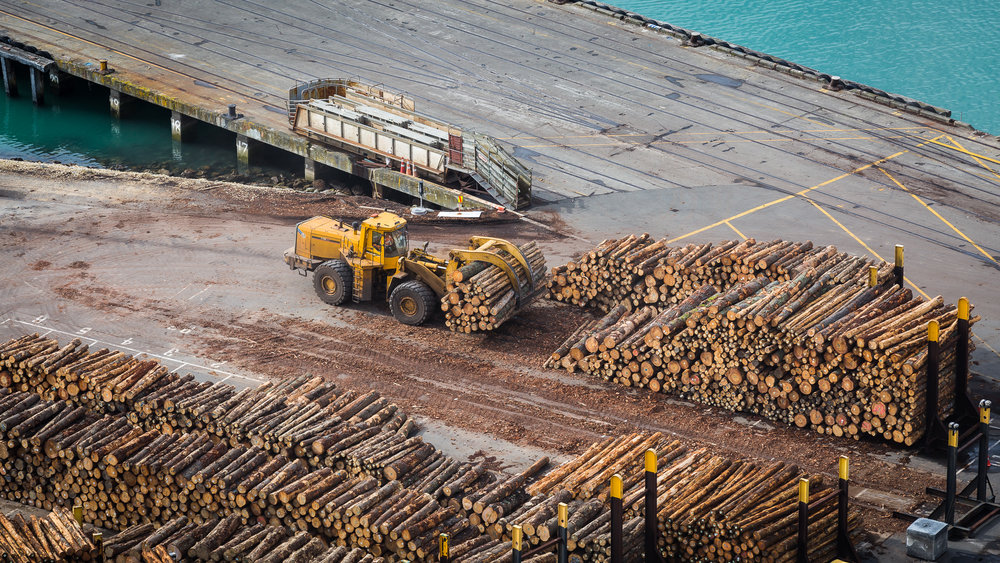 Port of Napier - Shipping Logs