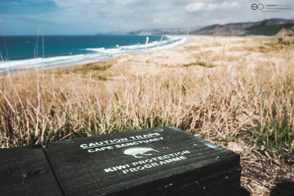 Cape Sanctuary Kiwi Protection Trap