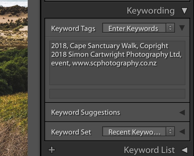 Lightroom Keyword Dialogue Box