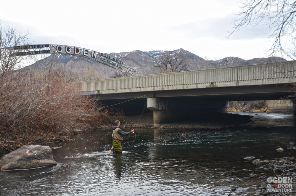 Early February Fly Fishing on the Ogden River directly behind Slackwater Pizzeria