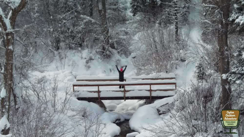 Hands in the air on the photogenic bridge to Icebox Canyon