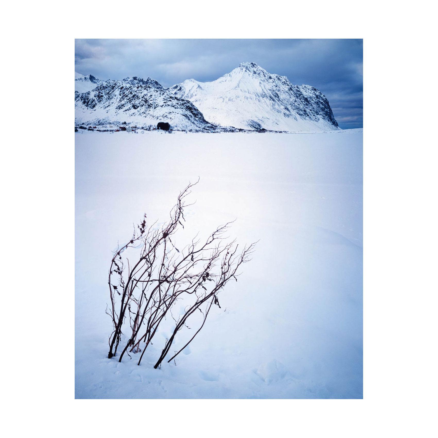 Ytterpollen, Lofoten