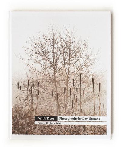 用树木,由Dav Thomas