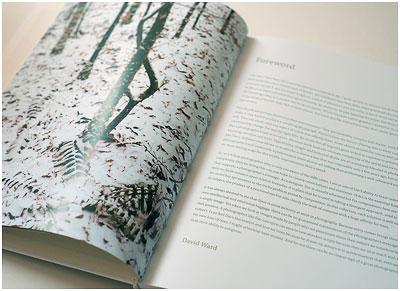 用树 -  Foreword-David-ward