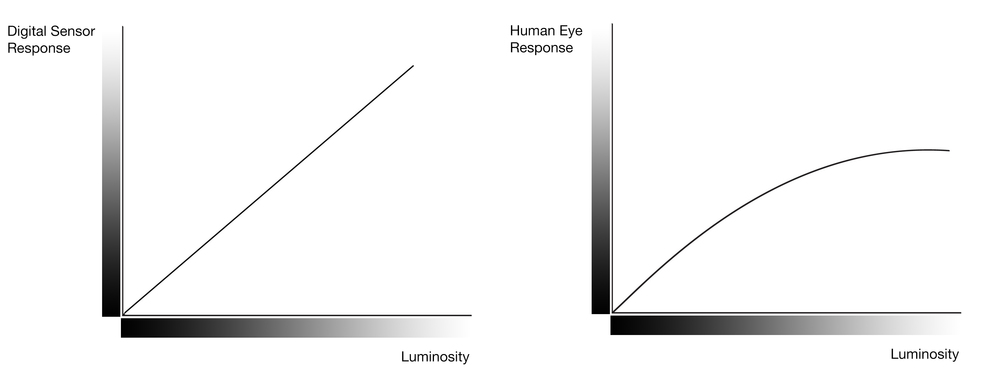 An overly-simplified illustration. It demonstrates that the human eye is not able to perceive differences in real-world tonal values. Our eye tends to compress brighter tones, which is why we need to use grads on digital cameras, because their response is linear, while our response is non-linear.