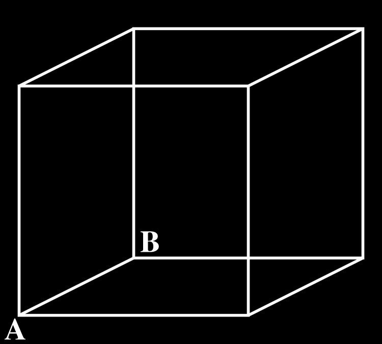 The Necker cube is an optical illusion first published as a rhomboid in 1832 by Swiss crystallographer Louis Albert Necker. If you look at it for a while, you may see the cube in two different ways. Keep looking!