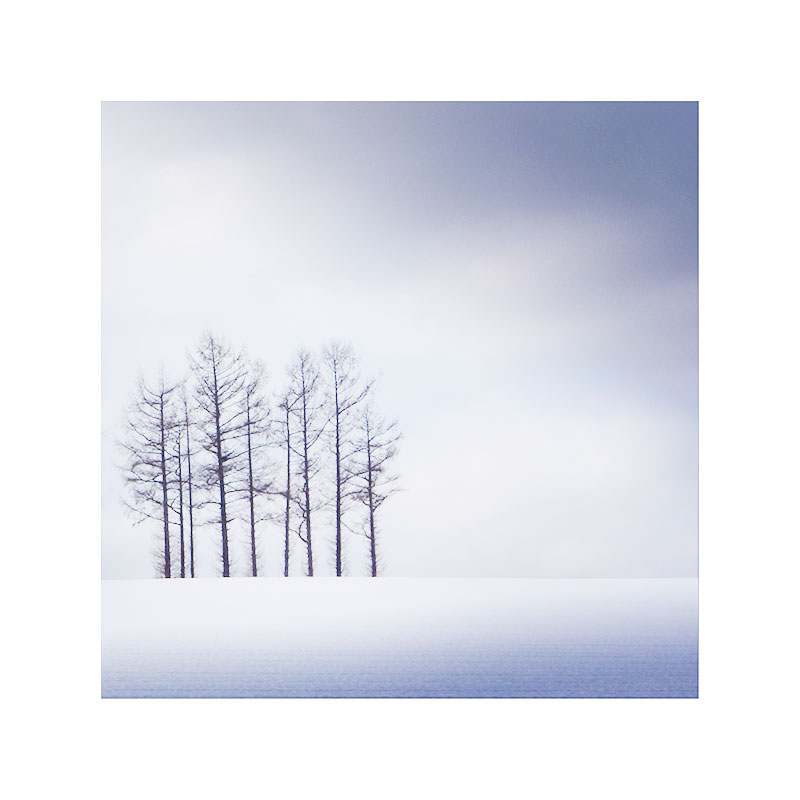Homage to Michael Kenna, Hokkaido, Japan, December 2015