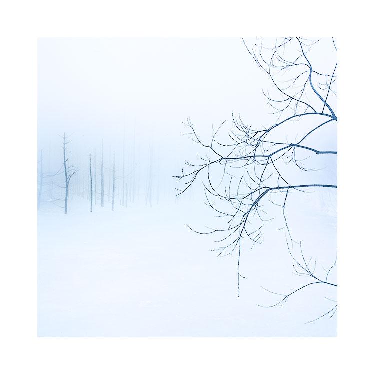 The Blue Pond, Hokkaido, Japan, 2015 Image © Bruce Percy