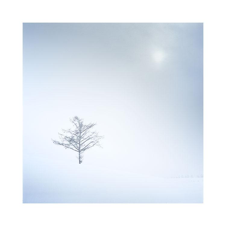 Hokkaido, Japan, December 2015 Image © Bruce Percy 2015