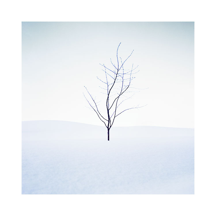 Hokkaido-2018-(29).jpg