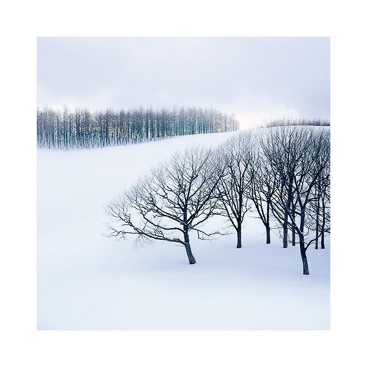 Hokkaido-(14).jpg