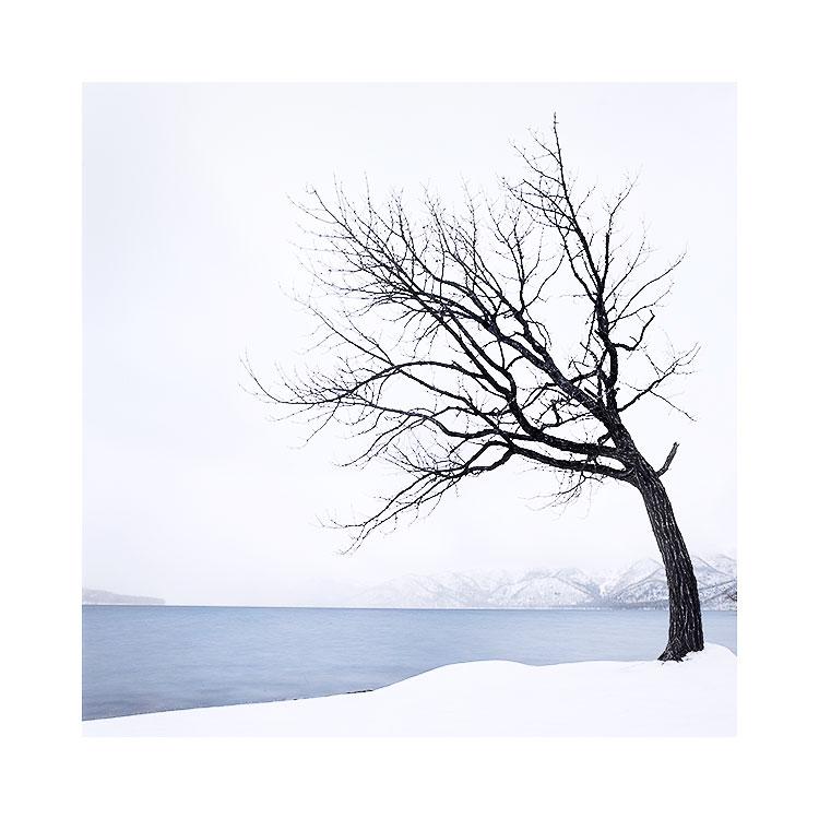Hokkaido-(29).jpg
