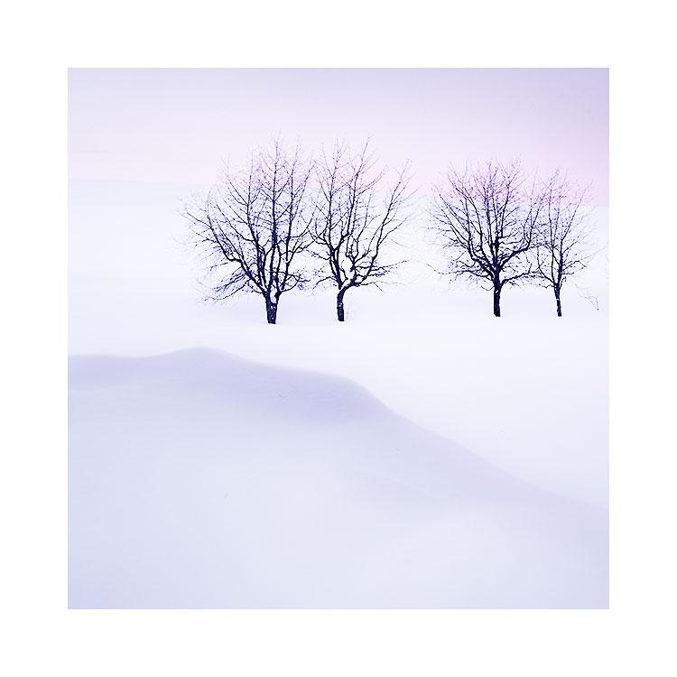 Hokkaido-2018-(11).jpg