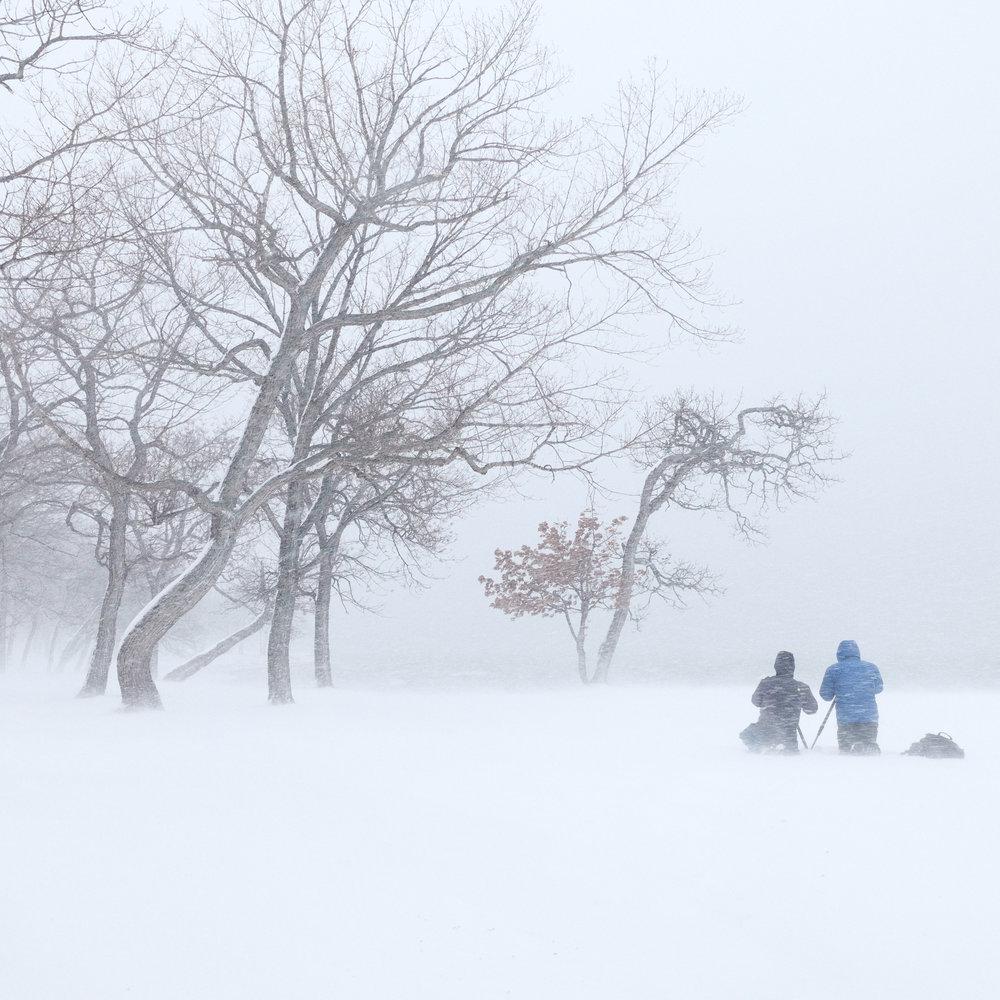 Image courtesy Steve Hunter, Hokkaido tour participant