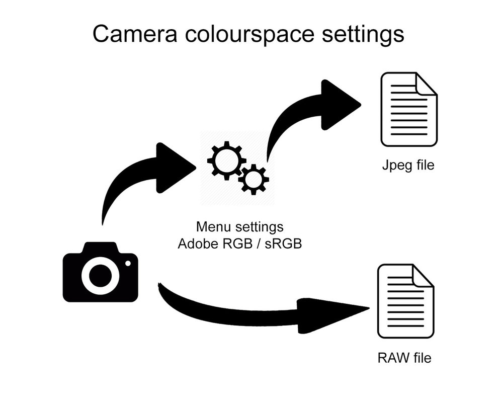 Cameras and Colourspace Confusion