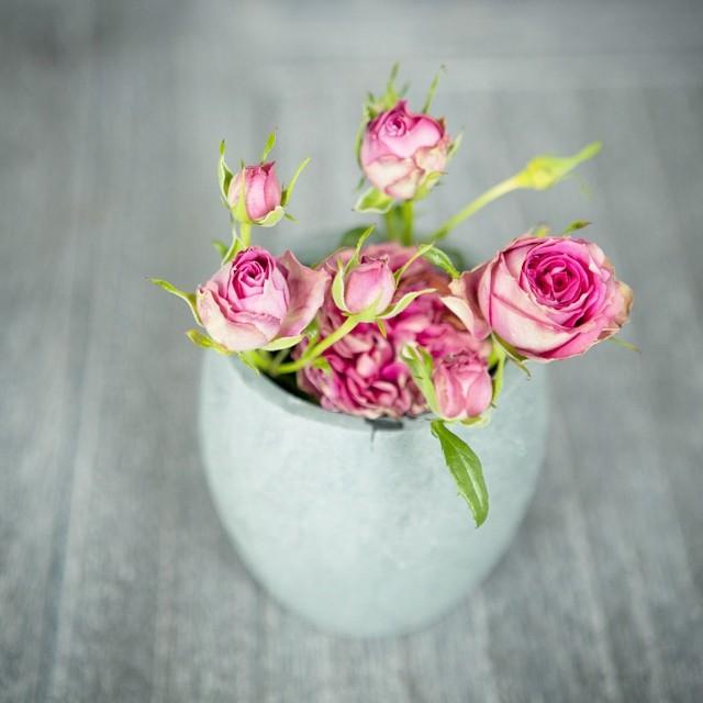 Красота в каждом цветке