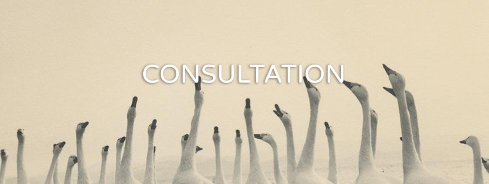 CONSULTATION_Header.jpg