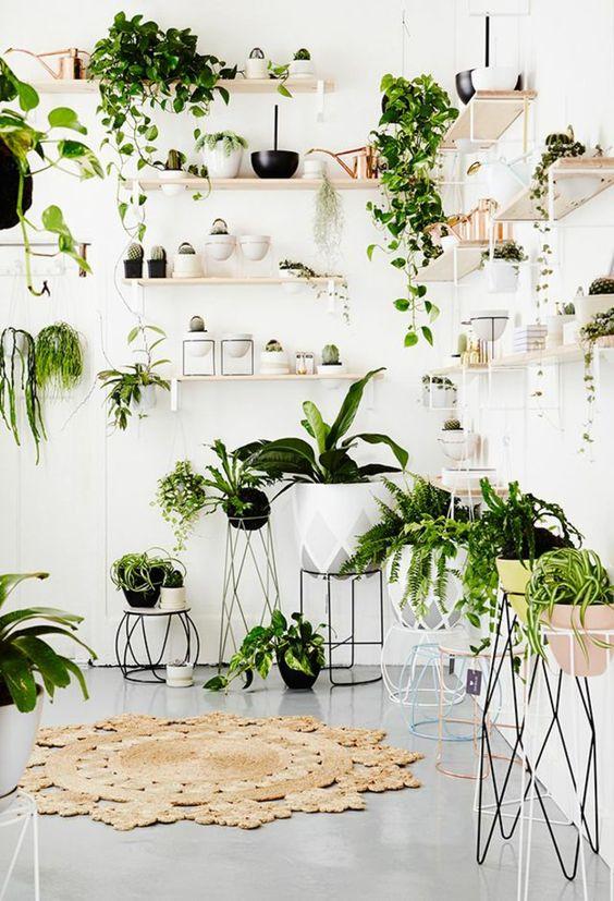 indoor.jpg